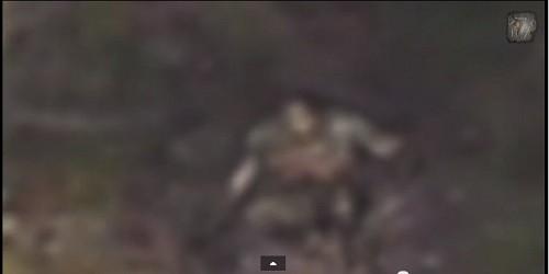 bigfoot-thumb-500x250-2425