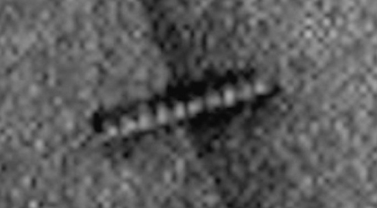 2016-06-03_081117