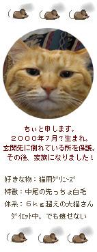 2009 ちぃ