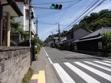ひ路花 鎌倉街道