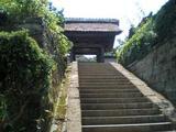 鎌倉SAKURA 長寿寺