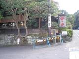 鉢の木カフェ 店