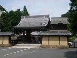 鎌倉SAKURA 建長寺