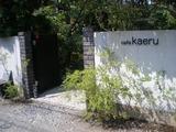 カフェカエル 入口