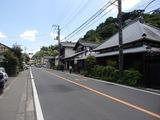 菜根や 鎌倉街道
