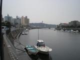竹波 境川からの江の島