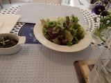テラスレイ サラダ