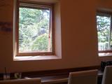 CAFE bee カウンターの窓