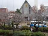 四季菜 雪ノ下教会