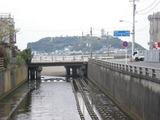 海しゃり 神戸川から江ノ島