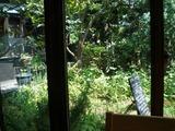 カフェ カエル 庭