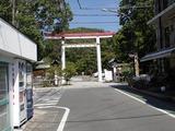 わらしべちょー茶 鎌倉宮