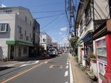 コキア 鎌倉街道