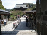 鉢の木カフェ 建長寺2