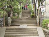 左可井 杉本寺
