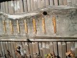 多可邑 古い竹垣のメニュー