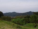 いろりや杢 葉山の山2