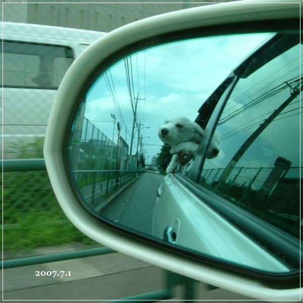 PHOTO327