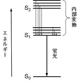 Kamitsubo47_fig2