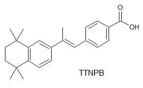 TTNPB
