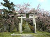 大山公園鳥居05年04月22日10時47分.jpg