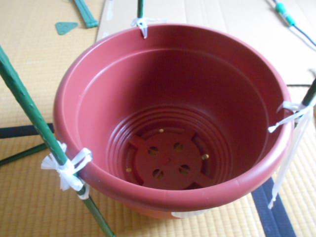 ダイソー連結トマト支柱を10号鉢に固定するのに失敗した
