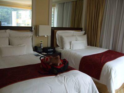 ベッド二台