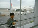 JALでソウルに出発
