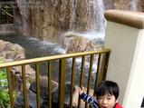 いとこ甥と滝