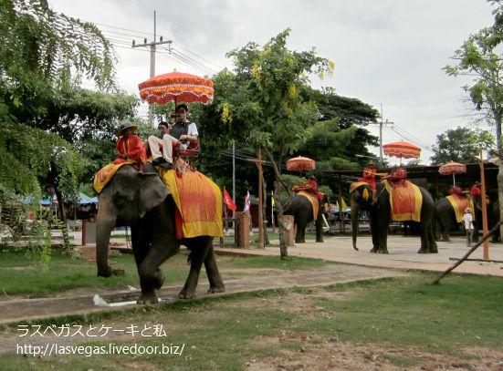 ゾウに乗る