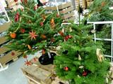 イケアのクリスマスツリー