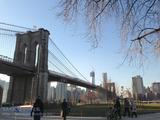 ニューヨークでタイバニ聖地巡礼記・2 シュテルンNY