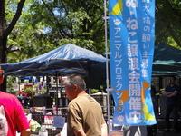 譲渡会 (神奈川県庁)