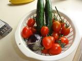 収穫(^−^)