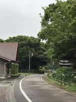 花の国園路