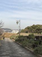 冬のハーブ園
