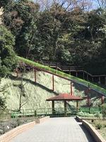 滑り台オープン(ハーブ園)