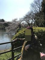 お花見三ッ池公園