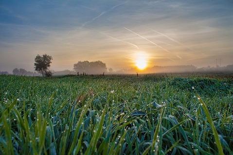 sunrise-3051938_640