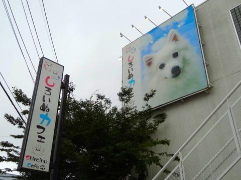 97dae7640137 犬連れて しろいぬカフェ : シェビーズのブログ