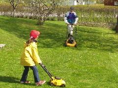 庭の芝刈り風景