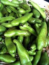奈良産 えんどう豆