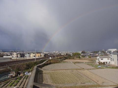 H231230虹1