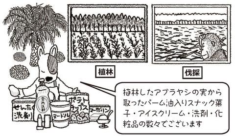 パーム油で出来ている商品