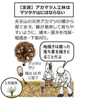 マツヤマ再生プロジェクト1
