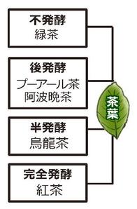 お茶分類表