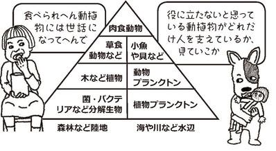 おばちゃんとハグと生物ピラミッド