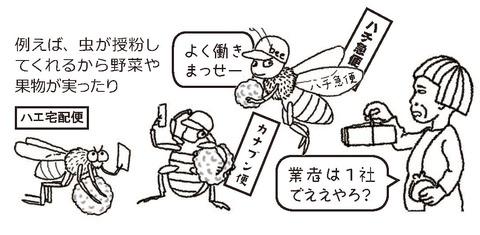 虫の宅配業者3社