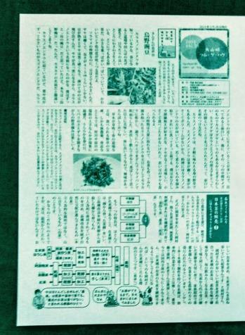 KIMG0451 (1)
