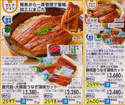 おうちコープうなぎ2018(小)